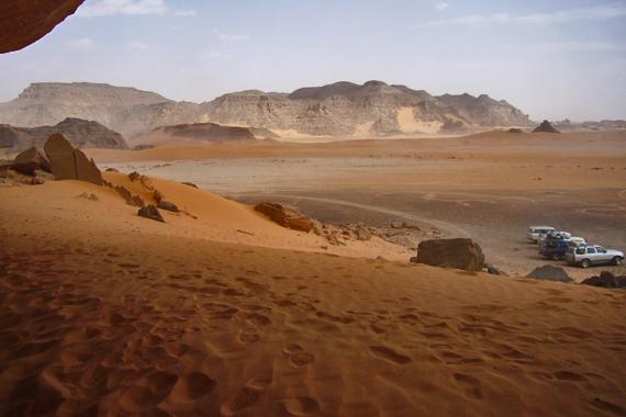 Libia Saronno